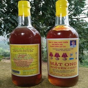 Mật ong thanh xuân Lào cai - asp