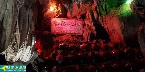 Rượu na lang hầm rượu