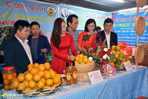 Cam Vinh
