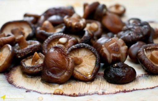 Gia vị nấm hương