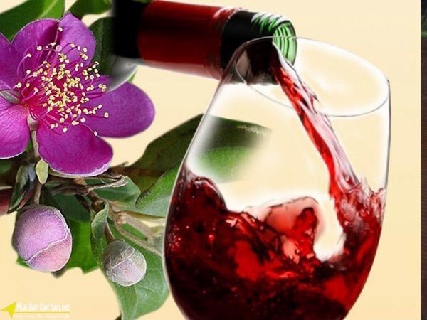 Cách uống rượu sim